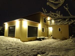 De nuit sous la neige