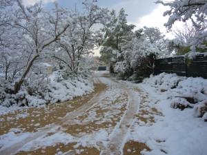 Chemin d'accès